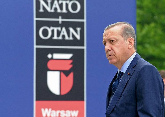 에르도 간 총리 보좌관은 터키의 나토 회원 가입을 재검토 할 것을 촉구했다.