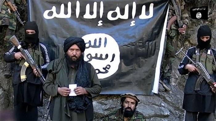 In Afghanistan, calculated the number of militants IG * in the country