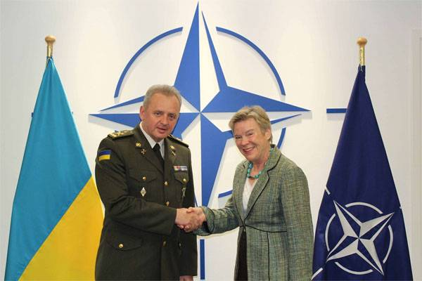 Muzhenko: We are preparing to introduce peacekeepers in the Donbass