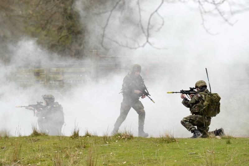 В Финляндии начнутся масштабные военные маневры