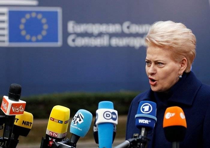 Wasserman: Grybauskaite rächt Russland für seine sowjetische Vergangenheit