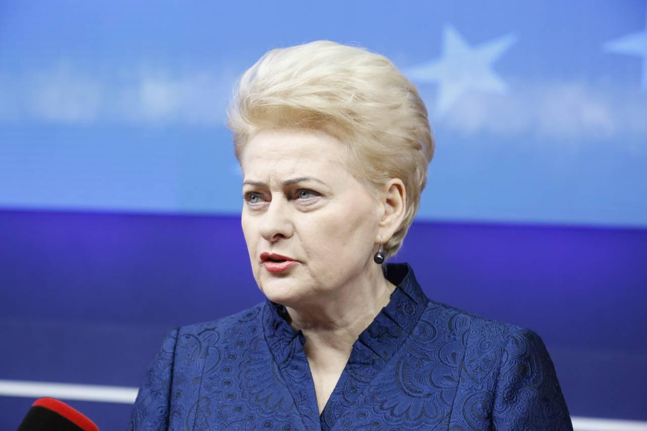 Грибаускайте Литва старается дружить со своими соседями Военное  Отношения с нашим соседом Россией в ближайшие годы останутся сложными Если в стране сохранится нынешнее руководство то ситуация не изменится
