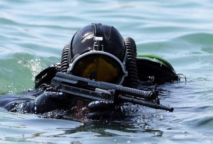 В России создали новые боеприпасы для борьбы с подводными диверсантами