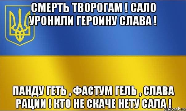 Мой дедушка меня непоймет— вВСУ раскритиковали приветствие «Слава Украине»