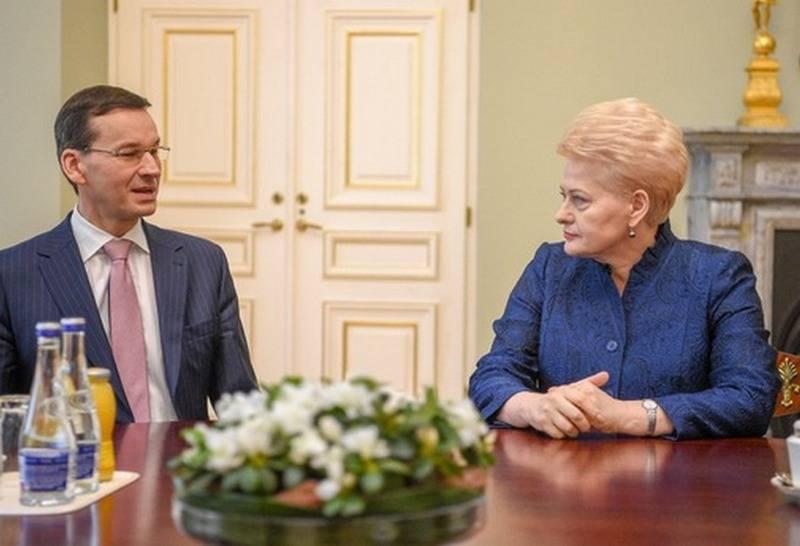 लिथुआनिया सैन्य अलगाव से बचने के लिए पोलैंड के समर्थन पर गिना जाता है