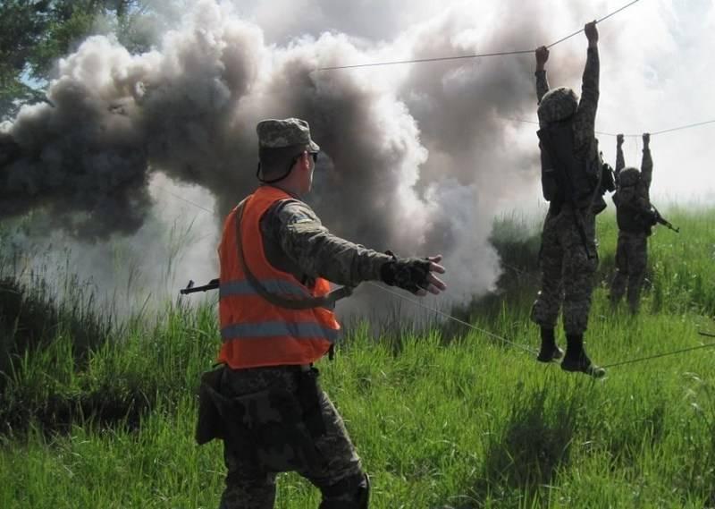 Das Verteidigungsministerium der Ukraine kaufte eine Mischung zum Begasen von Bäumen anstelle von Rauchgittern