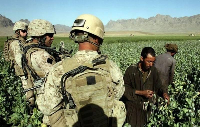 La production d'héroïne de l'Afghanistan a triplé en trois ans
