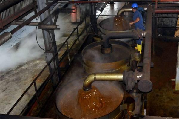 Sécurité alimentaire Ministère de l'agriculture est prêt à introduire des quotas pour l'importation d'huile de palme