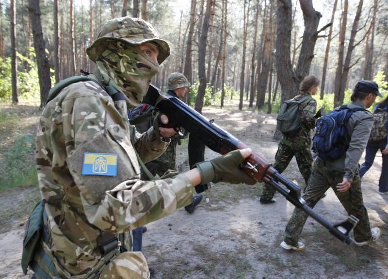 Эксперт рассказал о возможной роли украинских спецназовцев в войне между НАТО и Россией