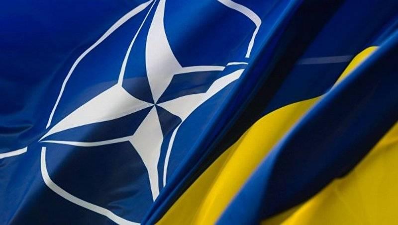 拉达批准了乌克兰对北约的愿望。 北约批准了吗?