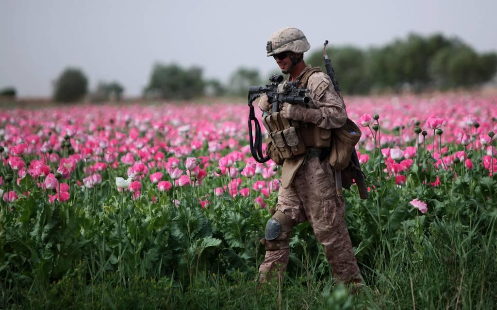 Спайс наркотик афган Опиаты Сайт Россия