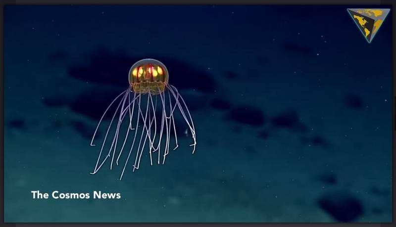 Китайский глубоководный аппарат побил мировой рекорд погружения