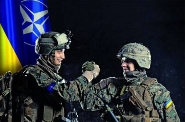 NATO in the Donbas. In the DPR announced the NATO control of the shelling of Yasinovataya