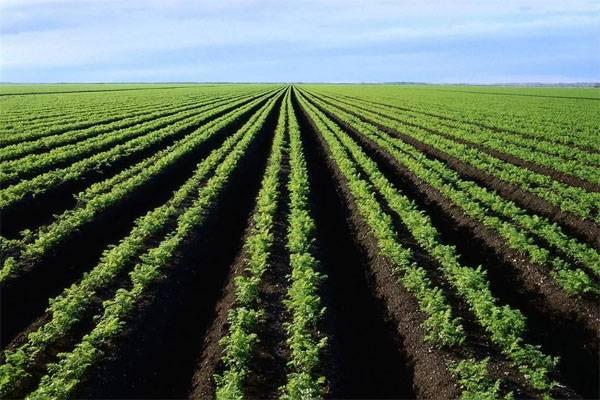 Войны за воду и еду - реальность? Пугающая статистика FAO