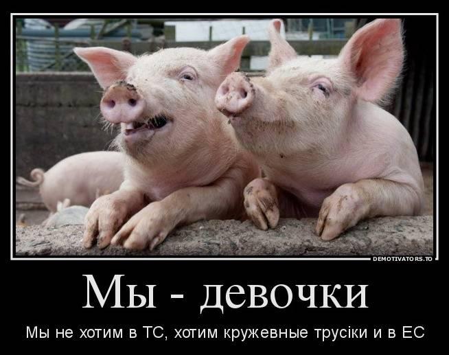 Украина находится под внешним управлением— народный депутат