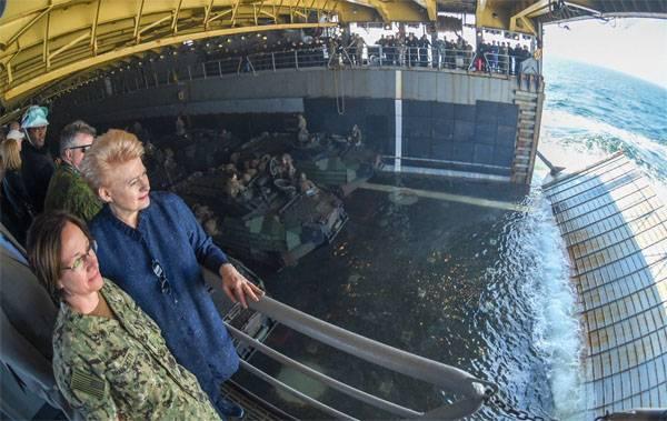 Увеличение армии на 600 человек спасёт Литву от России. Размышления Грибаускайте