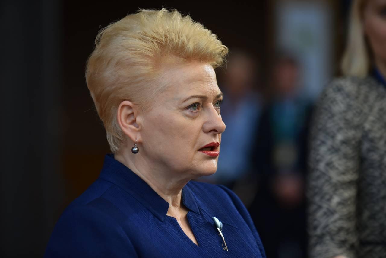 Президент Литвы призвала НАТО защититься от РФ североамериканскими ЗРК Патриот