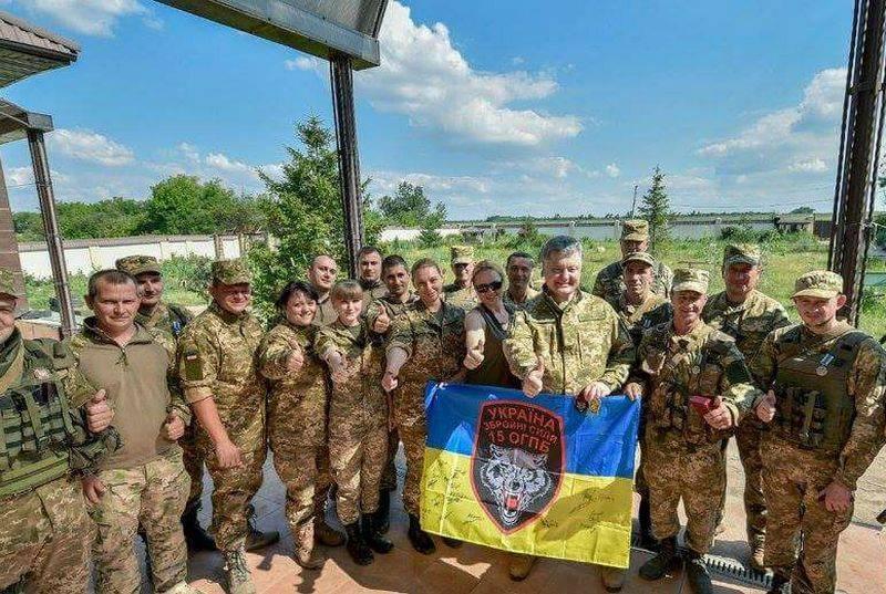 Гриценко: Украинская армия находится в плачевном состоянии