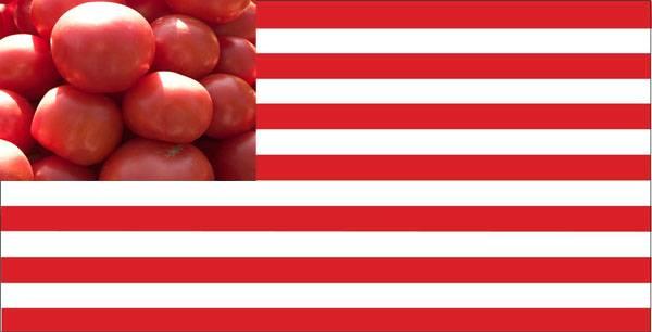 Турция удвоила размер пошлин наимпорт 22 видов американских товаров