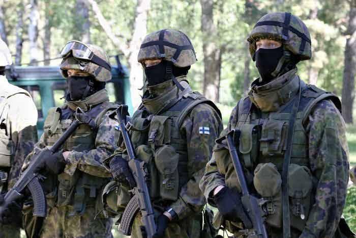 Мяса нет, бери картофель – в финской армии вводятся вегетарианские дни