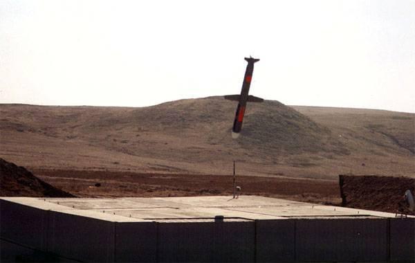 СМИ США: Пентагон наметил цели в Сирии для нанесения ударов