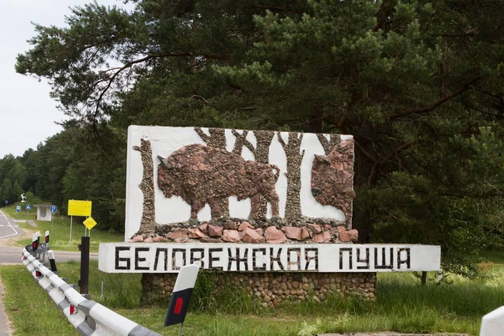 оформить займ на карту в platiza ru