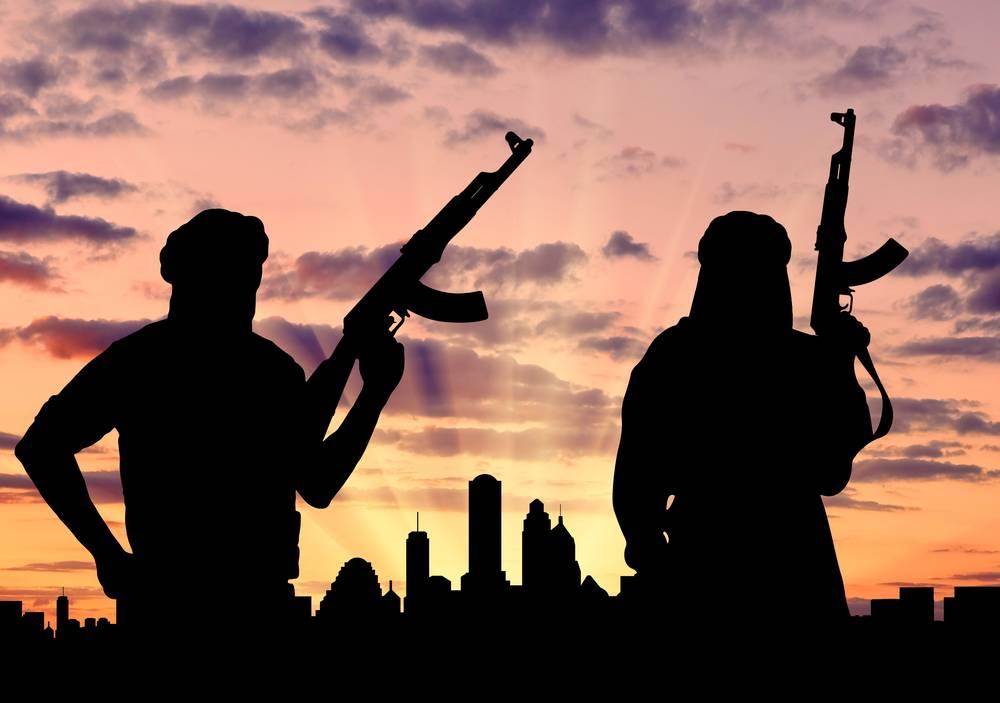 Нидерланды прекращают финансирование «Белых касок» и«умеренных повстанцев»— DutchNews