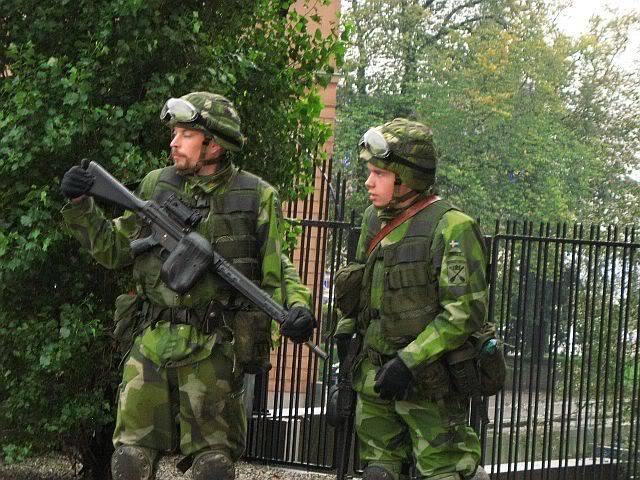 Шведы ищут новую Полтаву