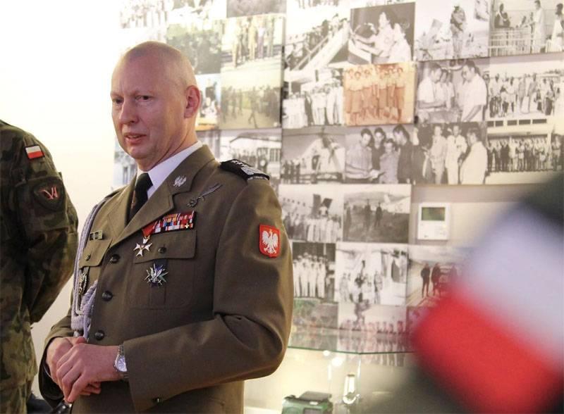 Польский генерал: В случае войны с Россией Польша беззащитна как младенец