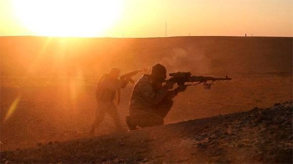 रूसी विदेश मंत्रालय ने तालिबान की कैद से इशीलोवित्स को बचाने के लिए अमेरिकी लक्ष्यों के बारे में बात की