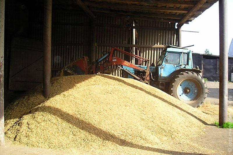 एफएसबी और फेडरल टैक्स सर्विस बड़ी कृषि जोत की जांच कर रहे हैं