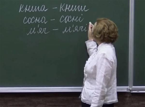 """Эксперты на Украине закон о языке назвали """"выстрелом в собственную ногу"""""""