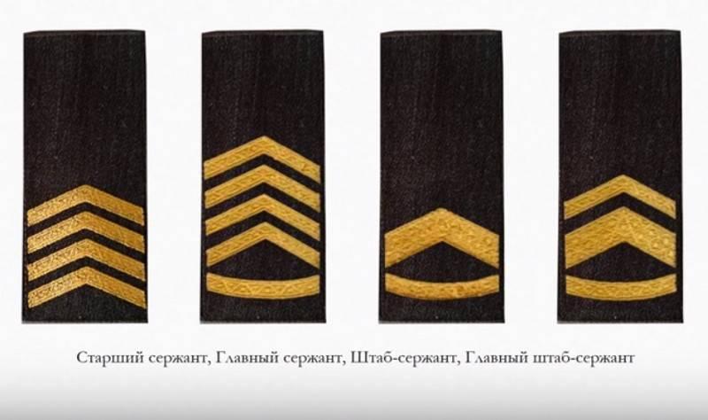 В ВСУ скоро появятся рекруты и солдаты, а также много разных сержантов