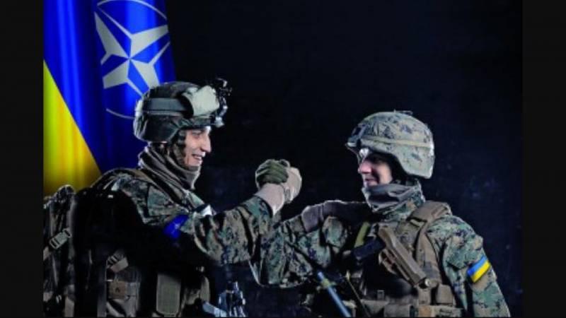 Равнение на НАТО. Перейдёт ли украинская армия на стандарты НАТО?
