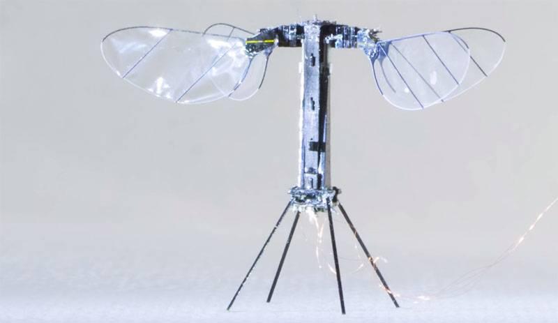 """В США показали дрона-""""насекомого"""" массой менее грамма"""
