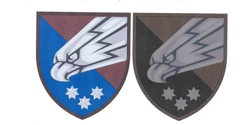乌克兰伞兵以类似于SS的方式批准了徽章