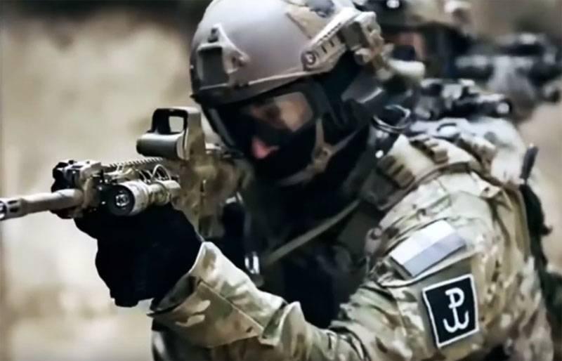 В Польше назвали ошибки при тренировках спецназа GROM в городских условиях