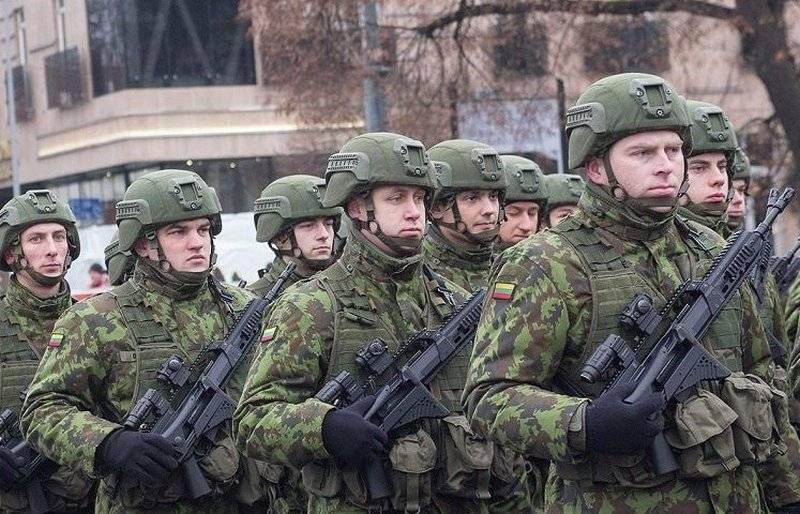 Литва приняла решение об увеличении вооруженных сил на 25 процентов