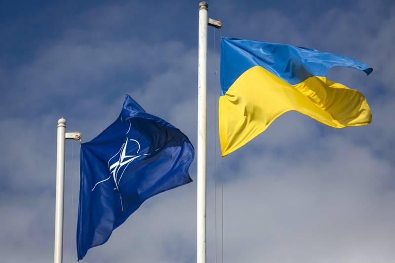 Negli Stati Uniti, hanno espresso disinteresse per l'adesione dell'Ucraina alla NATO