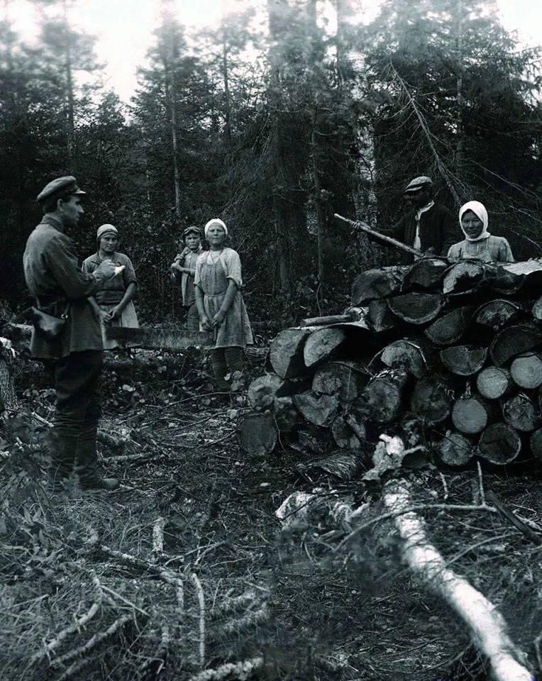 В попытках разгадать суть событий 1937 года в СССР