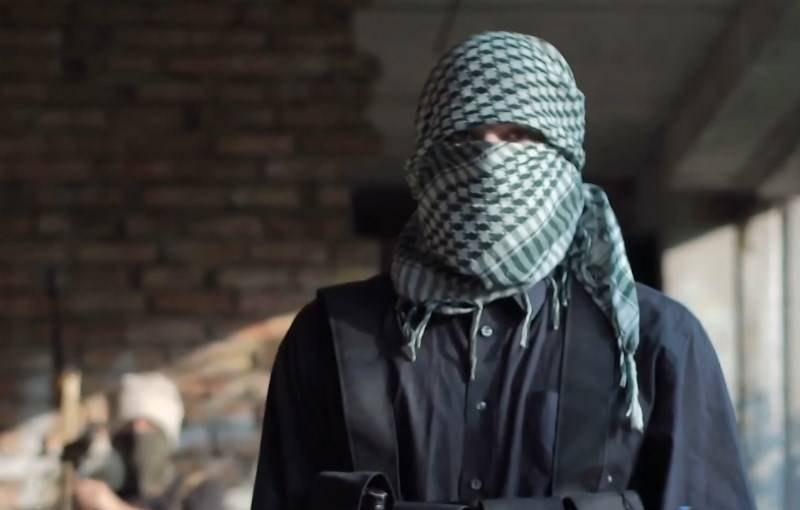 """""""For a salary of $ 100"""": captured militants talked about Turkey's support for radicals in Syria"""