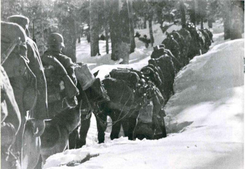 Операция «Ход конём». Дрвар, май 1944 года