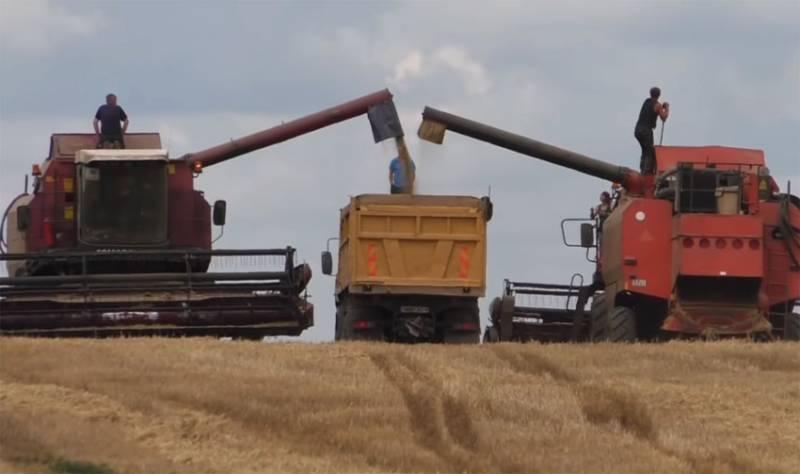 В Польше рассказали о росте цен на зерно в ЕС на фоне приостановки российского экспорта