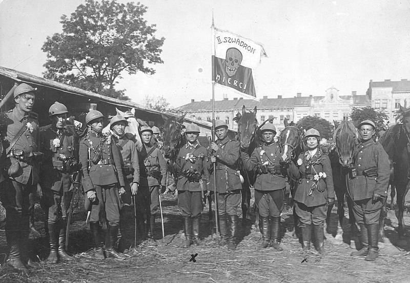 리 보프 전투. 갈리시아에서 붉은 군대의 실패