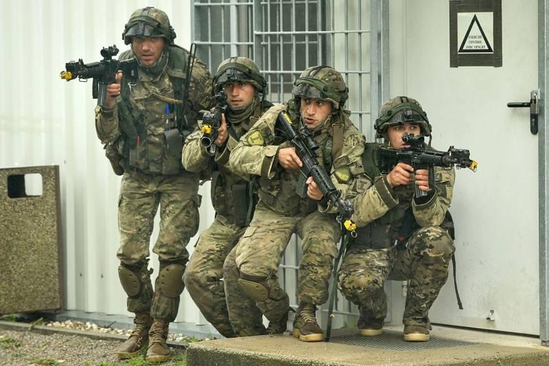 Когда Грузия вступит в НАТО
