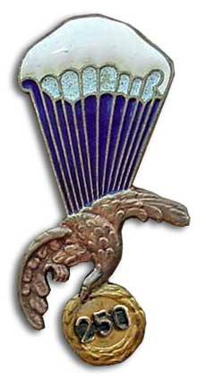 paratrooper badge