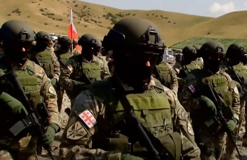 Georgian army begins rearmament with NATO standard weapons