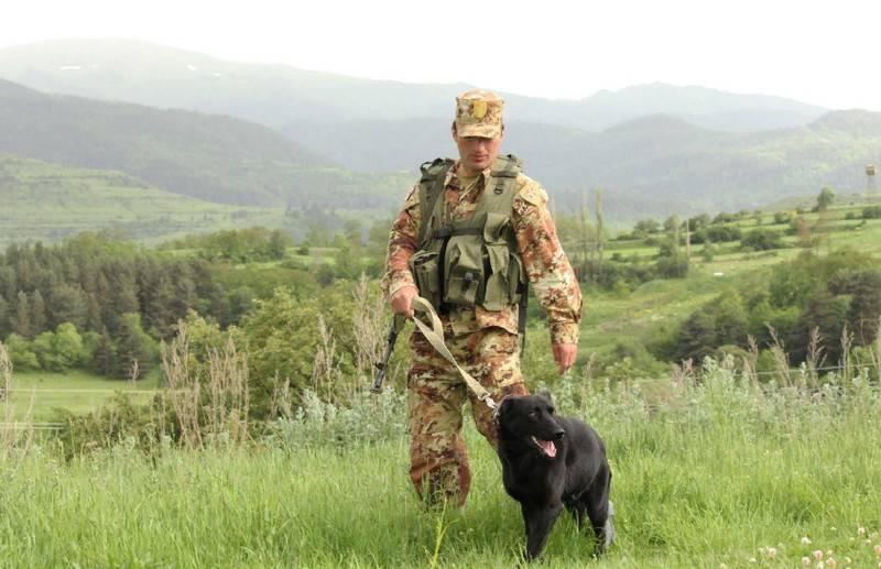 """""""잘못된 국경"""": 조지아는 러시아가 잘못된 지형도를 """"설치""""했다고 주장합니다."""