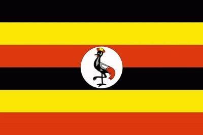 Чёрный цвет на государственном флаге. От ливы пророка Мухаммеда до национального пиджака