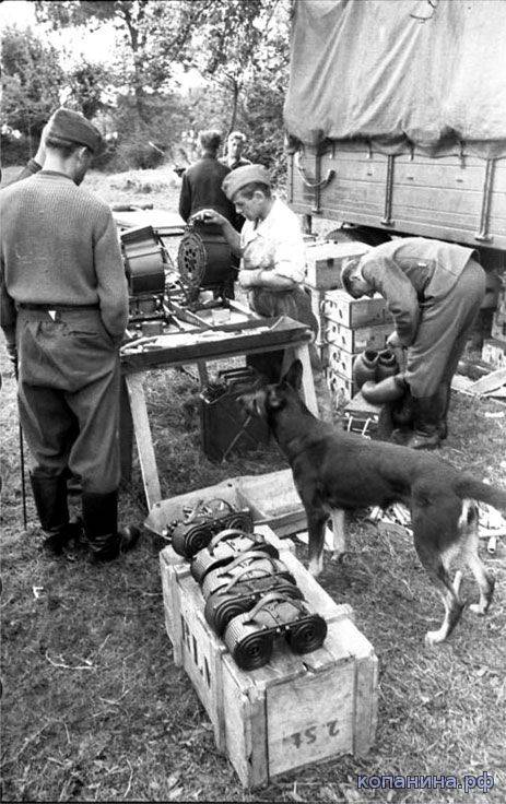 equipment stores for MG-34